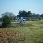 Elicottero ALIDAUNIA